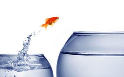 Die Vision umsetzen, Teil 3 – die innere Überzeugung überprüfen
