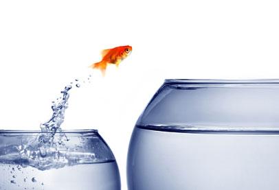 Agile Führung – Schritt für Schritt