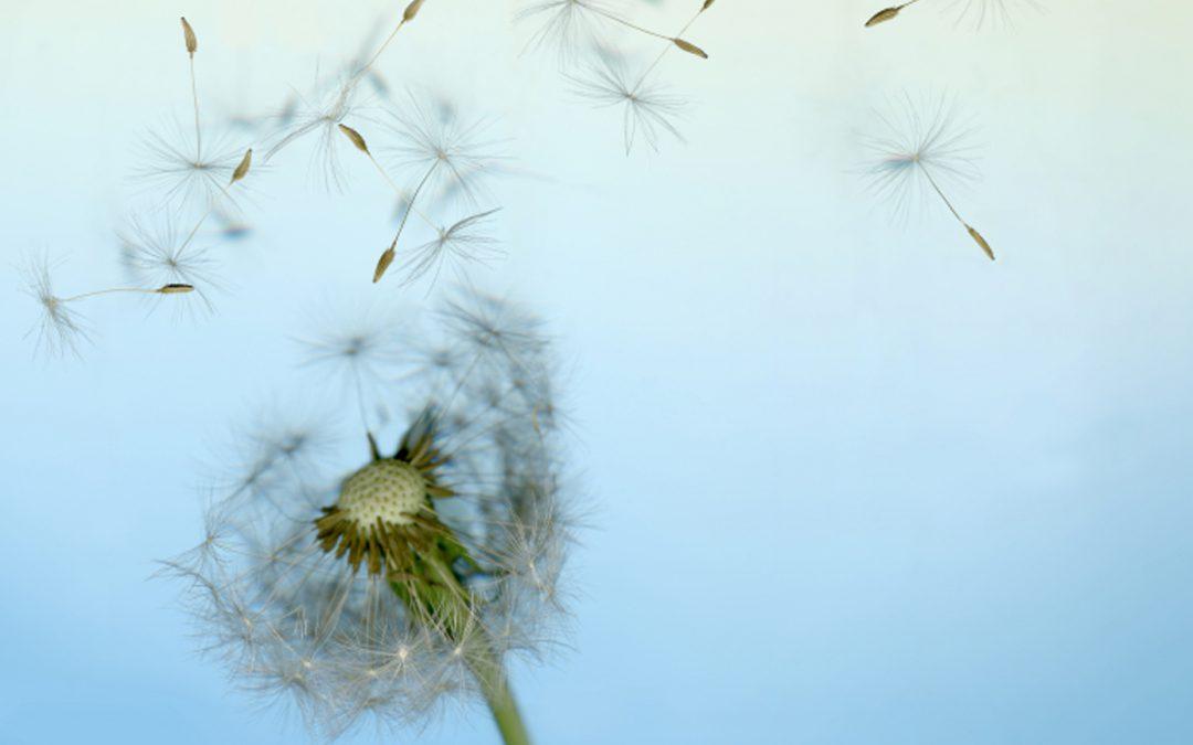 Stressmanagement: Führungskräfte als Vorbilder