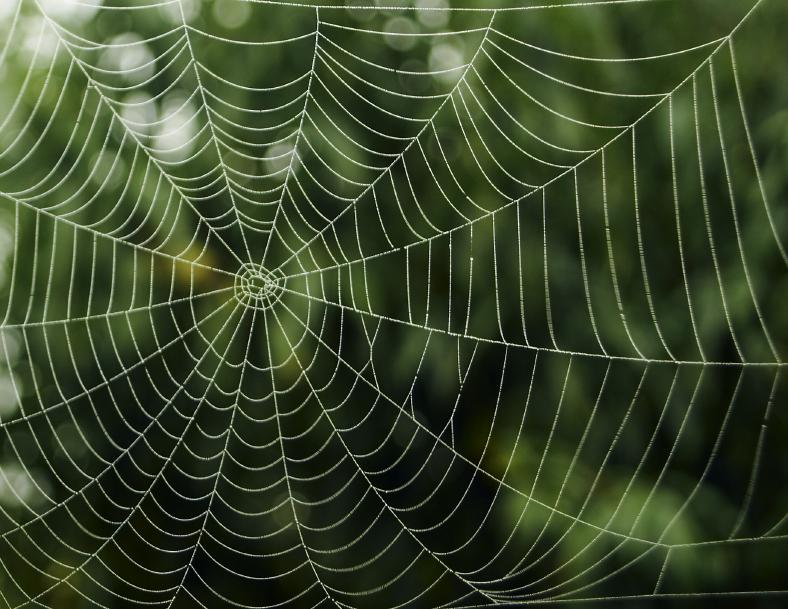 Goldene Regeln – Umgang mit Perfektionismus, Teil 2