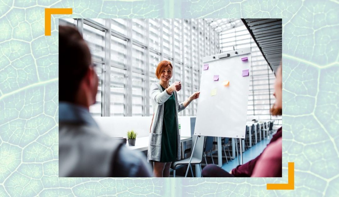 Cheffing: Wie Sie Ihren Chef so führen, dass er tut, was SIE wollen | RAUS AUS DEM HAMSTERRAD #17