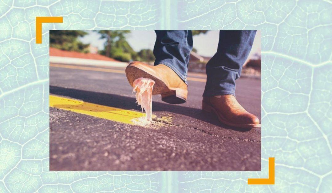 Scheitern – Was habe ICH falsch gemacht? – Fallbeispiel | RAUS AUS DEM HAMSTERRAD #85